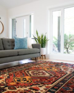 Carpet Cleaning in High Humidity